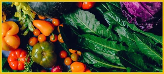 recetas verduras crudas