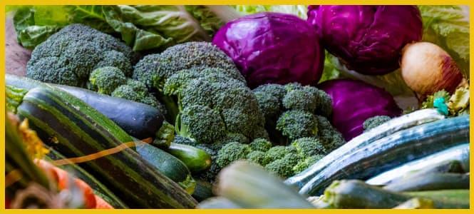verduras crudas en licuadoras