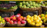 Cómo conservar las frutas