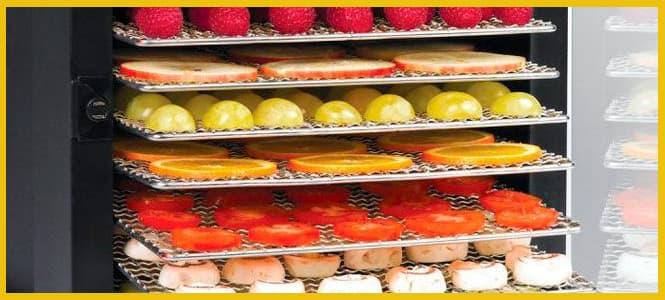 deshidratador de frutas